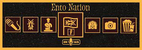 Ento Nation Logo
