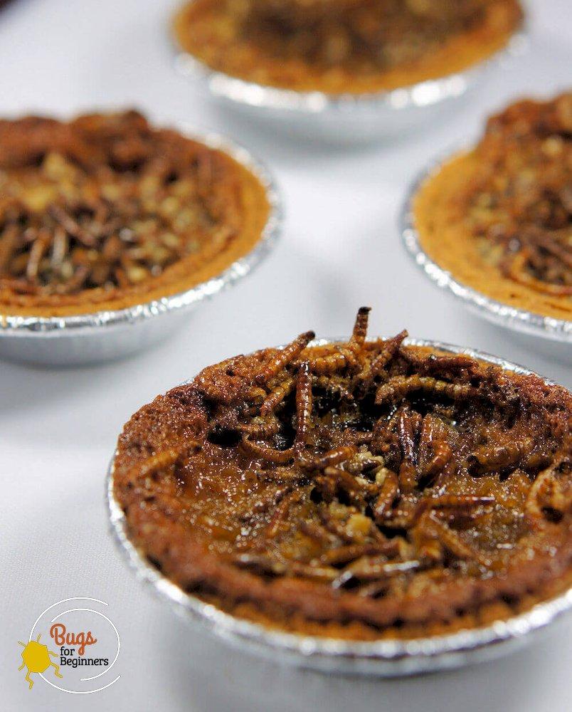 Mealworm Pecan Pie