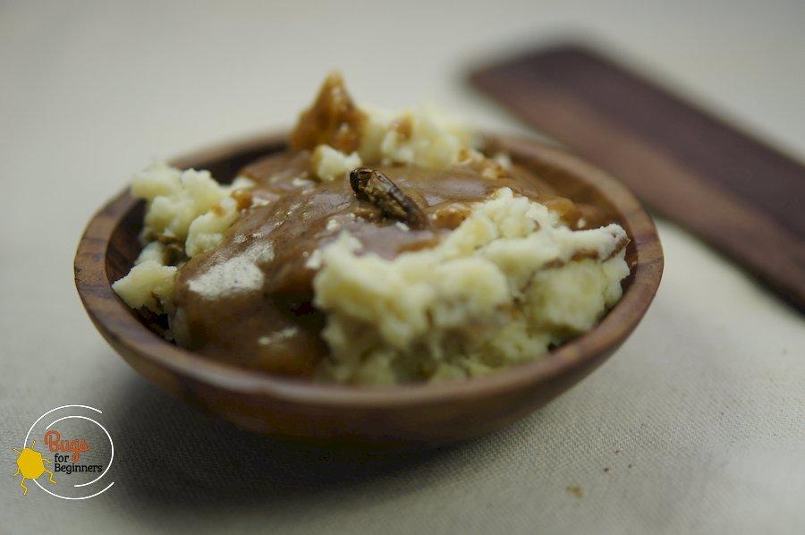 Mashed Potatoes and Cricket Gravy