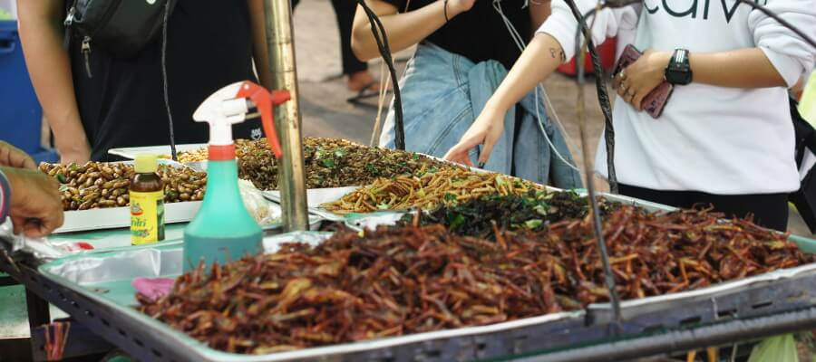 Edible Insects at a Thai market