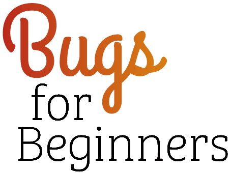 Bugs for Beginners cover