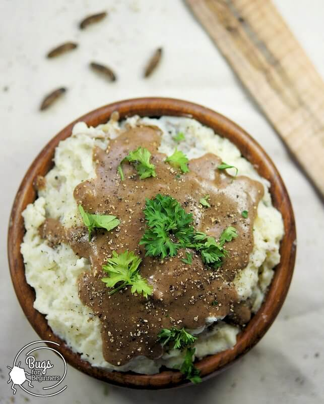 Mashed Potatoes with Cricket Gravy