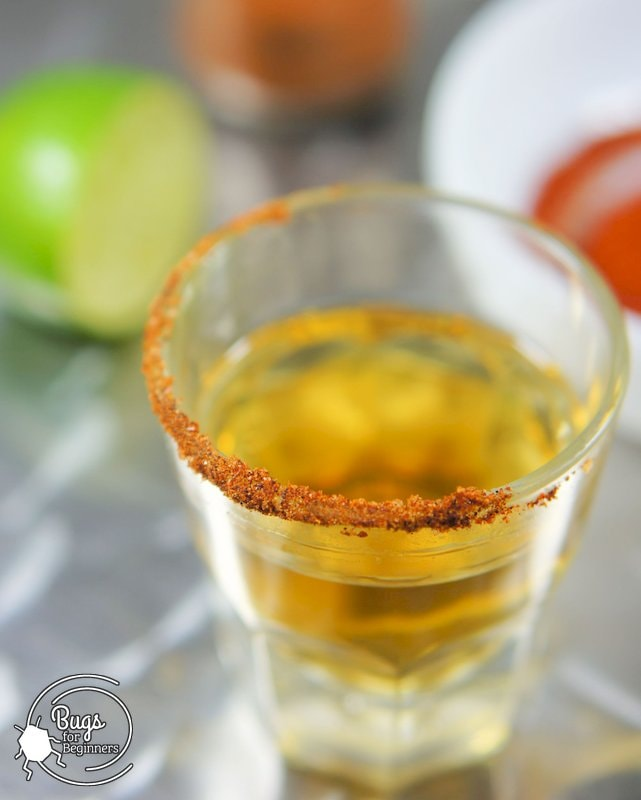 Tequila with Insect Salt Rim