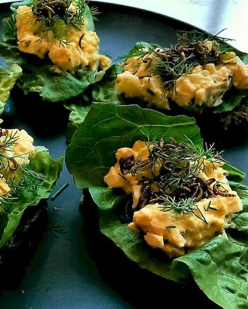 Egg Salad with Buffalo Worms