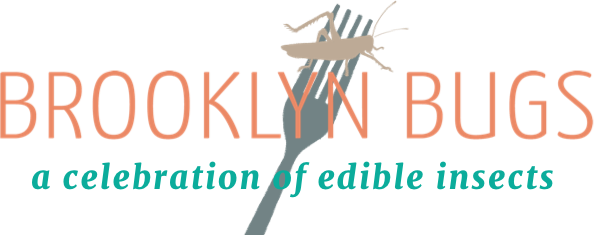 Logo Brooklyn Bugs