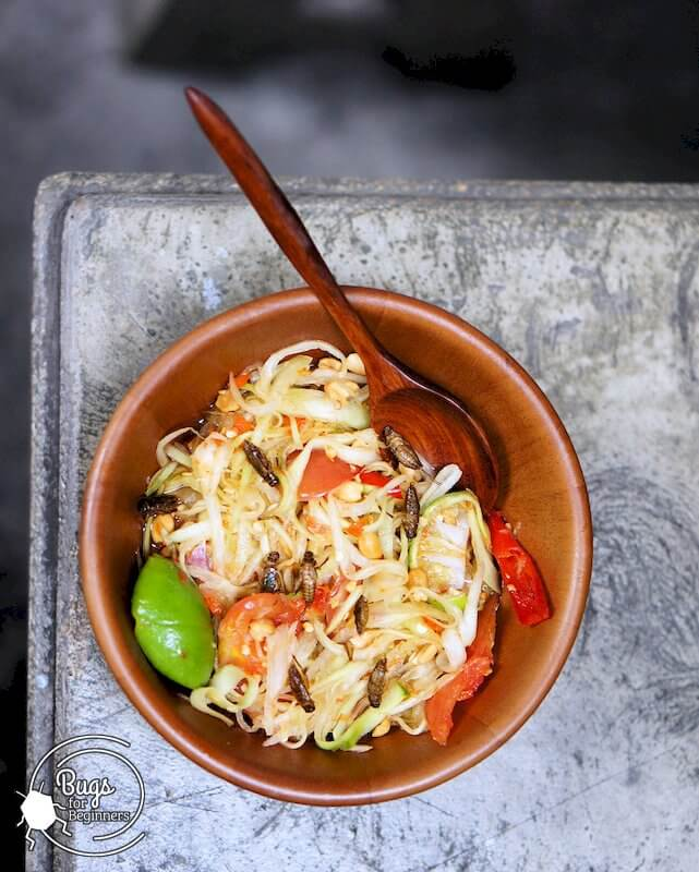 Thai Papaya Salad with Crickets